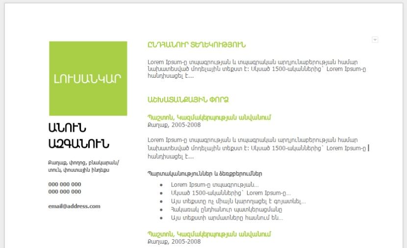 հայերեն ռեզյումեի օրինակներ